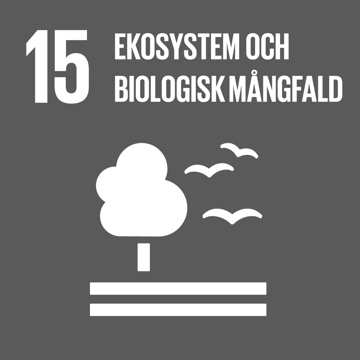 ekosystem och biologisk mångfald